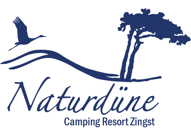 Camping Resort Zingst